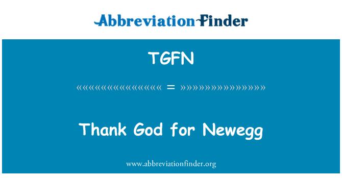TGFN: Thank God for Newegg