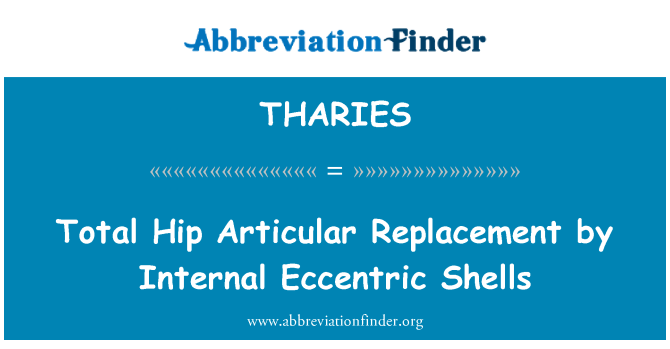 THARIES: Total Hip Articular Replacement by Internal Eccentric Shells