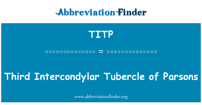 TITP: Third Intercondylar Tubercle of Parsons