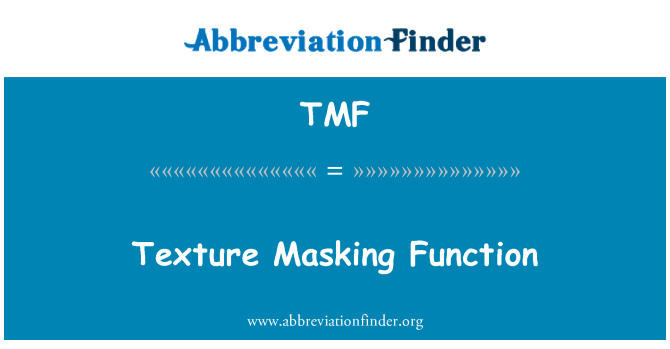 TMF: Texture Masking Function