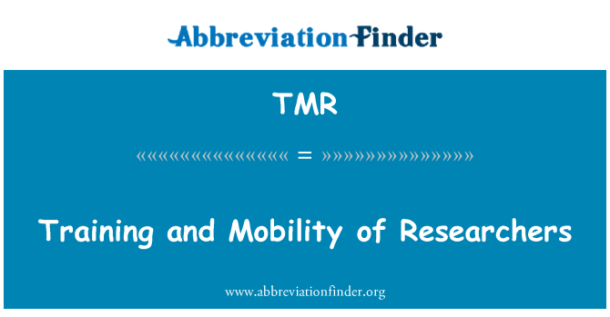 TMR: Training and Mobility of Researchers