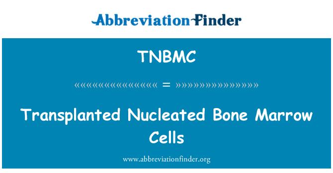 TNBMC: Transplanted Nucleated Bone Marrow Cells