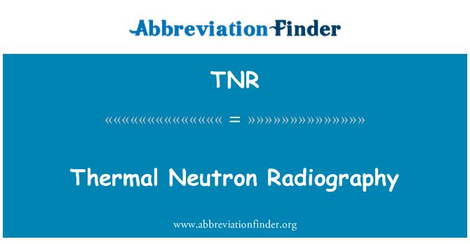 TNR: Thermal Neutron Radiography