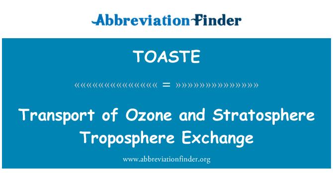 TOASTE: Transport of Ozone and Stratosphere Troposphere Exchange