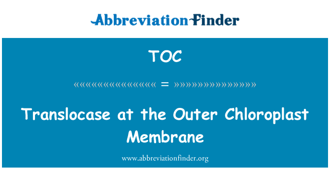 TOC: Translocase at the Outer Chloroplast Membrane