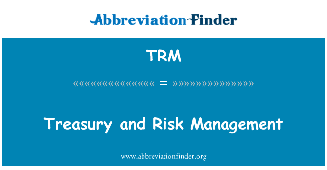 TRM: Treasury and Risk Management