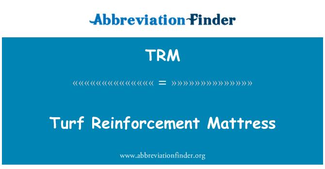 TRM: Turf Reinforcement Mattress