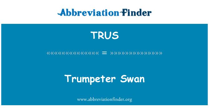 TRUS: Trumpeter Swan
