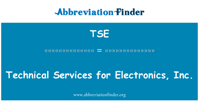 TSE: Technical Services for Electronics, Inc.