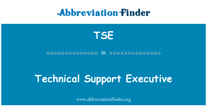 TSE: Technical Support Executive