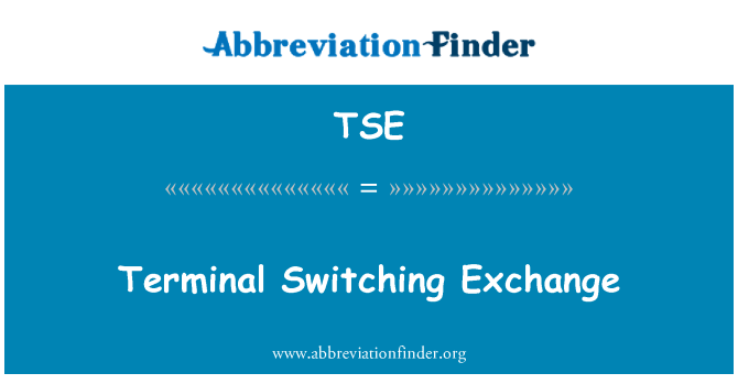 TSE: Terminal Switching Exchange