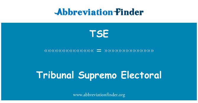 TSE: Tribunal Supremo Electoral