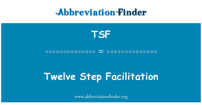 TSF: Twelve Step Facilitation