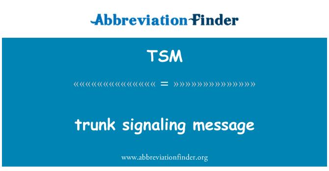 TSM: trunk signaling message