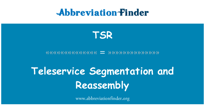 TSR: Teleservice Segmentation and Reassembly