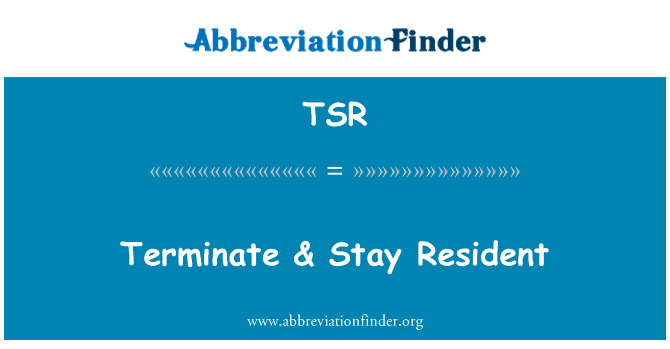 TSR: Terminate & Stay Resident