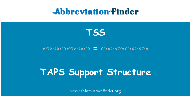 TSS: TAPS Support Structure
