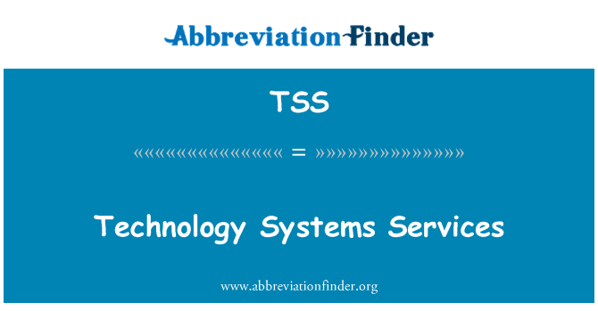 TSS: Technology Systems Services