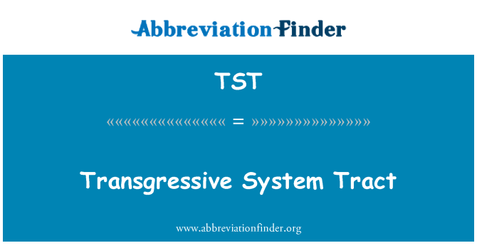 TST: Transgressive System Tract
