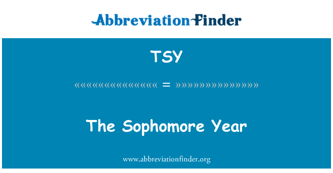 TSY: The Sophomore Year