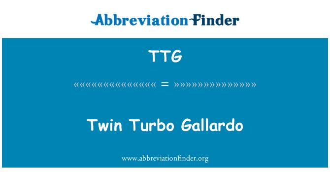 TTG: Twin Turbo Gallardo
