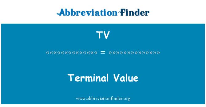 TV: Terminal Value