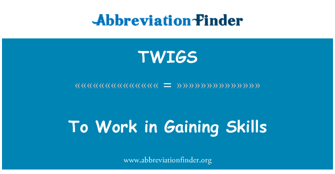 TWIGS: To Work in Gaining Skills
