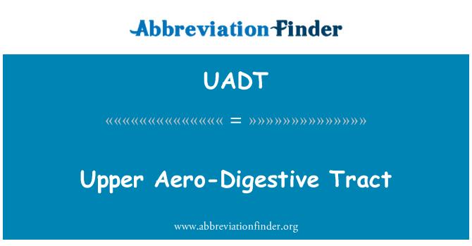 UADT: Upper Aero-Digestive Tract