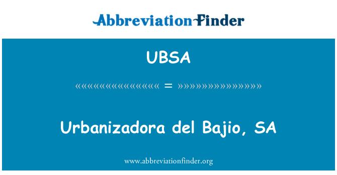 UBSA: Urbanizadora del Bajio, SA