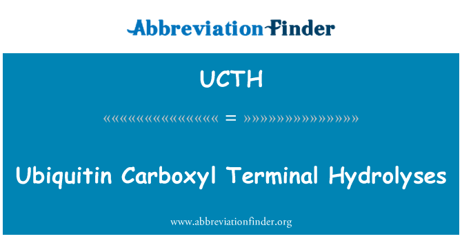 UCTH: Ubiquitin Carboxyl Terminal Hydrolyses