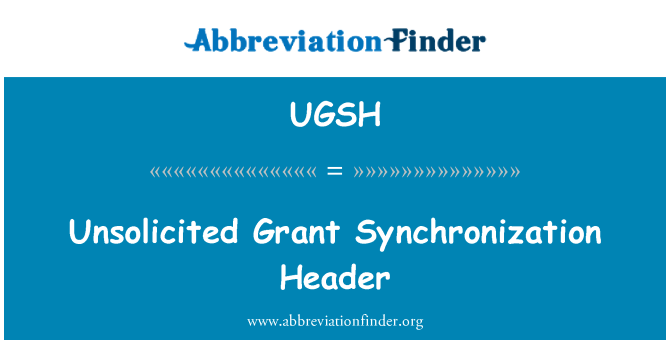 UGSH: Unsolicited Grant Synchronization Header