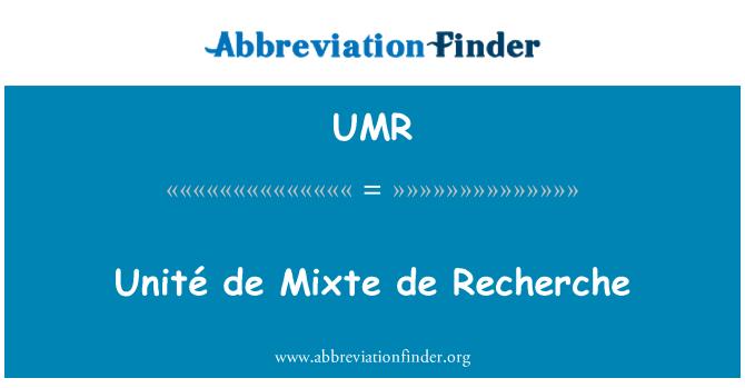 UMR: De Unité Mixte de Recherche