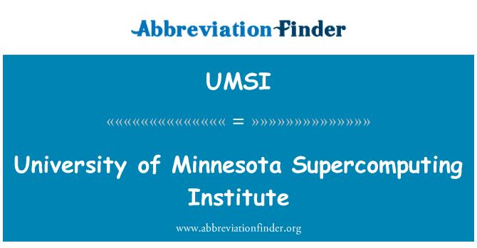 UMSI: Instituto de Supercomputación de la Universidad de Minnesota