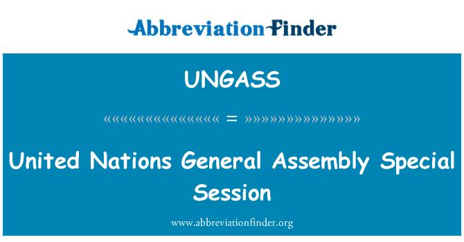 UNGASS: Mimoriadnom zasadaní valného zhromaždenia OSN