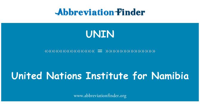 UNIN: Instituto de las Naciones Unidas para Namibia