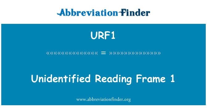 URF1: Unidentified Reading Frame 1