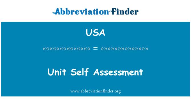 USA: 单位自我评估