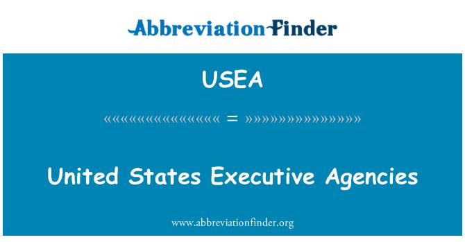 USEA: Amerika Birleşik Devletleri yönetim kurumları