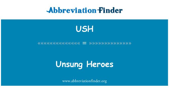 USH: Unsung Heroes