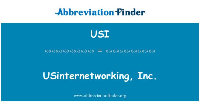 USI: USinternetworking, Inc.