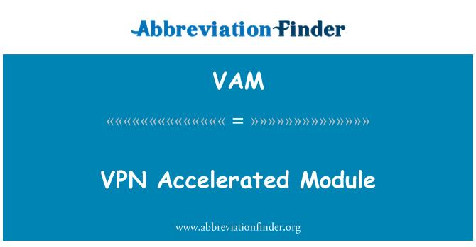 VAM: VPN Accelerated Module