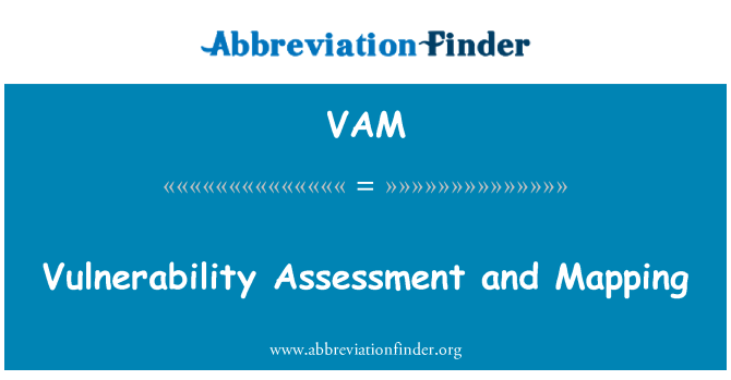 VAM: Vulnerability Assessment and Mapping