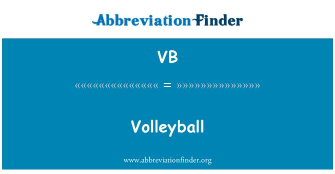 VB: 排球