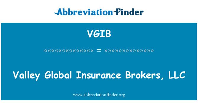 VGIB: Valley Global Insurance Brokers, LLC