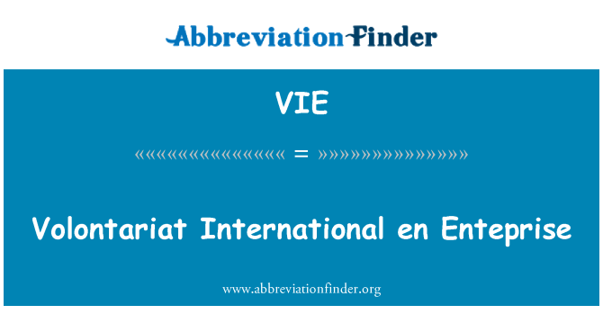 VIE: Volontariat International en Enteprise