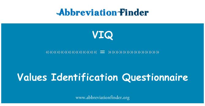 VIQ: Values Identification Questionnaire