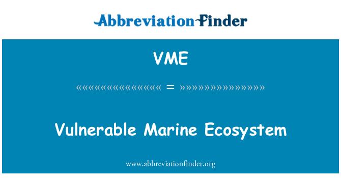 VME: Vulnerable Marine Ecosystem