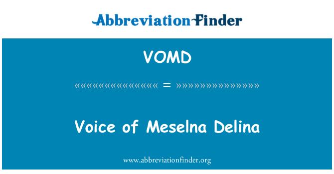 VOMD: Meselna Delina'nın sesi