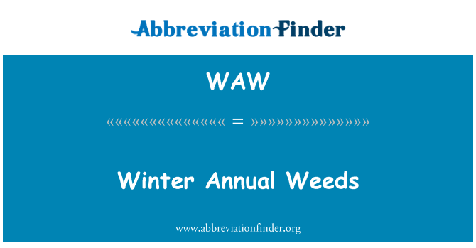 WAW: Winter Annual Weeds