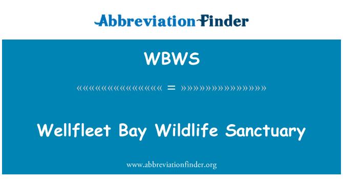 WBWS: Wellfleet Bay Wildlife Sanctuary